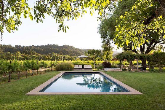 Swimming pool in a vineyard